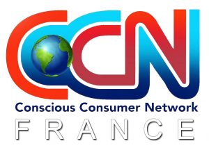 CCN-France-Site-Final-300x213
